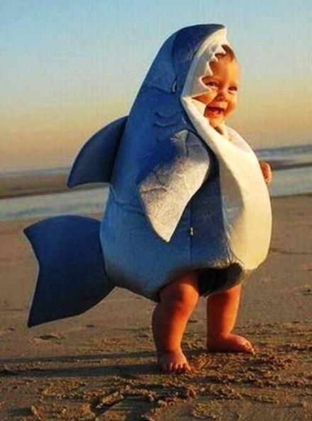 I Ate the Shark, Mom!