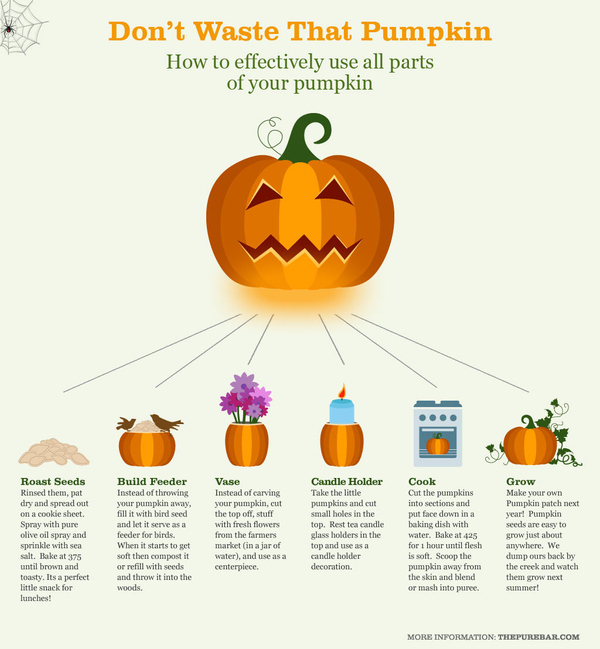 Don't Waste That Pumpkin
