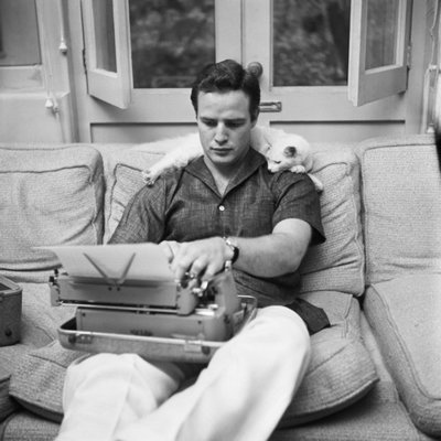 Marlon Brando, An Odd White Cat, And His Laptop