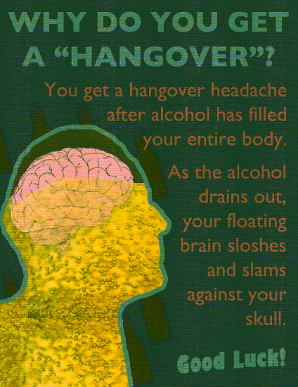 The Hangover: Why?