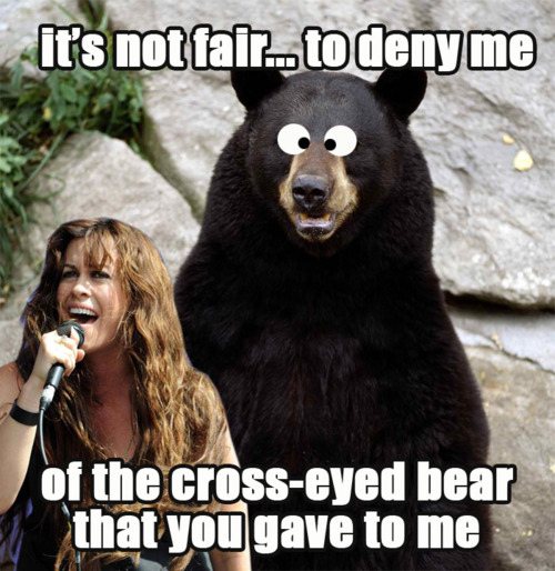 Alanis Morissette's Cross-Eyed Bear