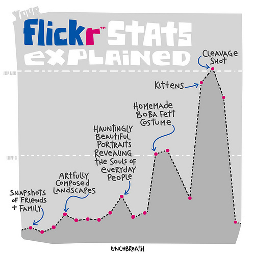 Your Flickr Stats Explained