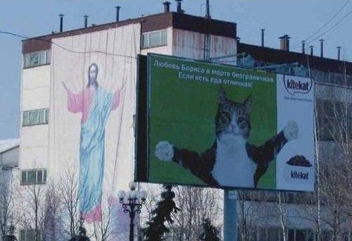 Jesus Cat