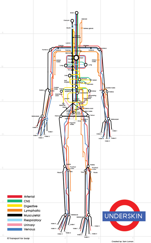 Subway Body Map
