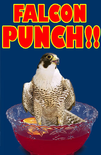 Falcon Punch!