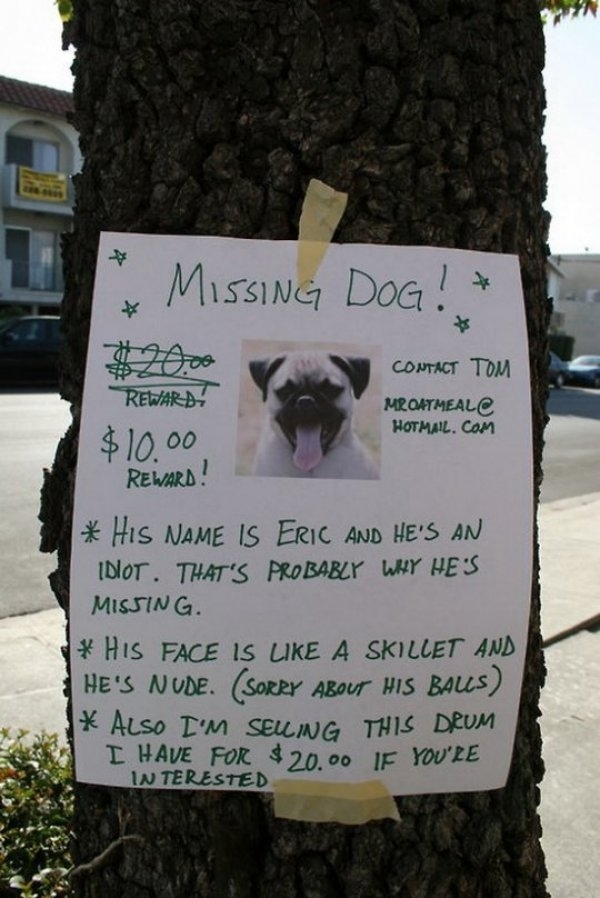 Hilairious Missing Dog Sign