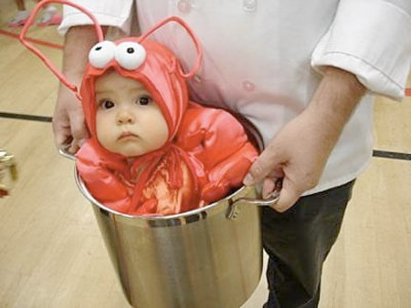 Adorable Lobster Baby