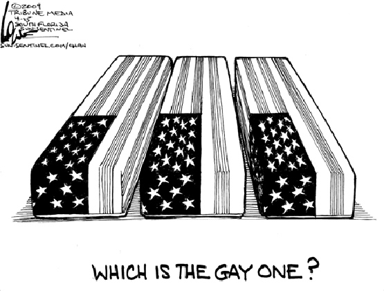 Which is the Gay One?