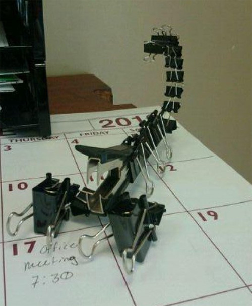 Office Project: The Office Scorpion