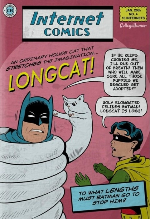 Internet Comics: Longcat