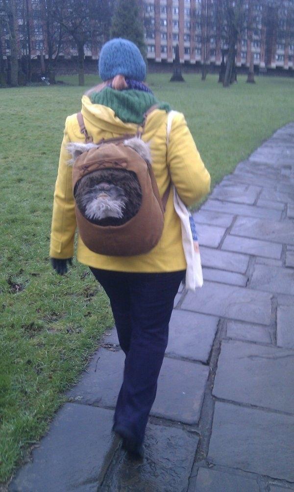 Creepy Ewok Bag