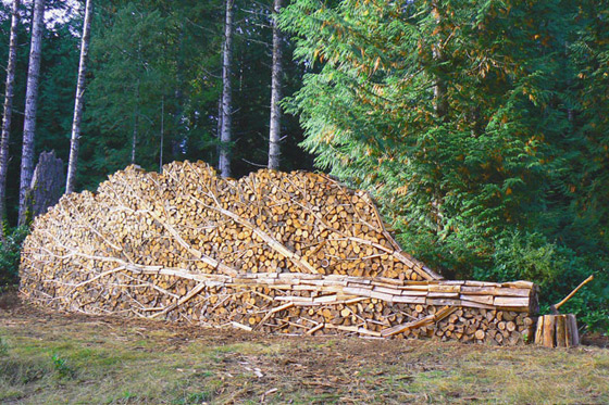 This Is How You Stack Wood
