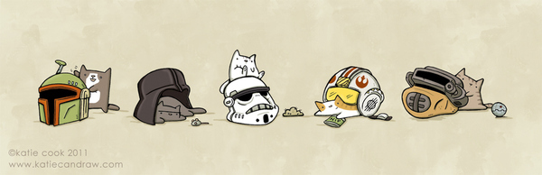 Cats In Star Wars Helmets