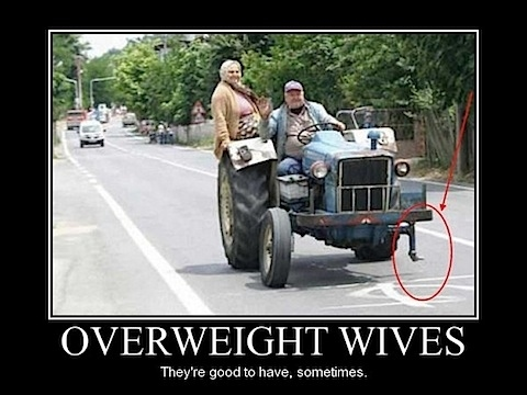 Overweight Wives
