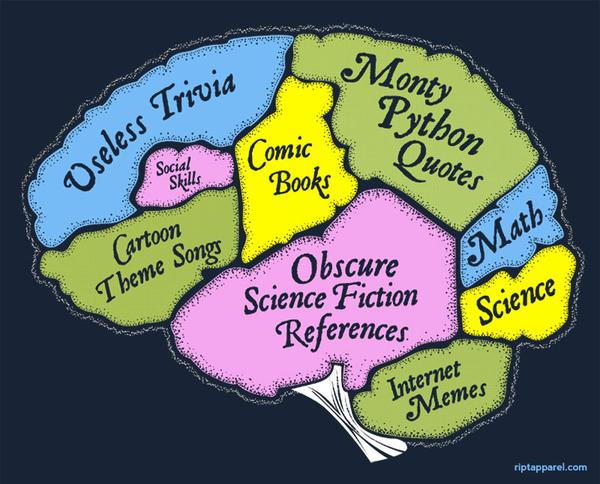 The Nerd Brain