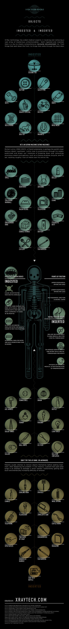 Infographic: Ingested and Inserted Objects