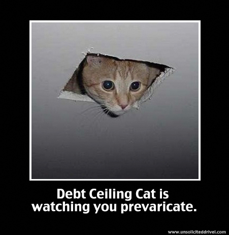 Ceiling Cat is Back!