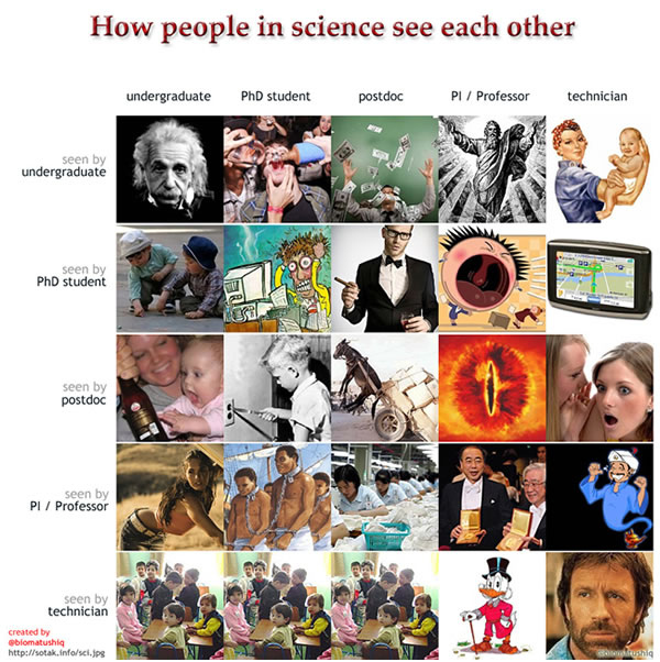 how-people-in-science-see-each-other-10799-1313604399-16.jpg