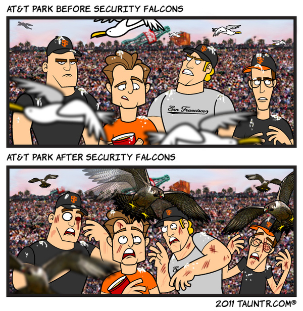 AT&T Park: Before & After the Security Falcons