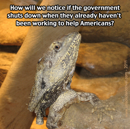 Cynical Lizard Asks: