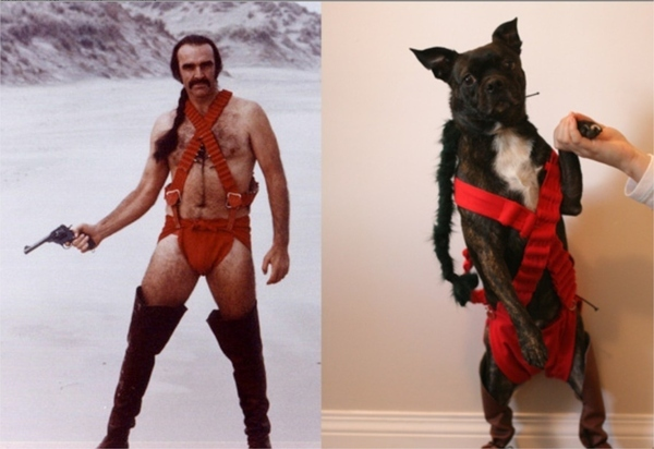 Zardoz and Zardog