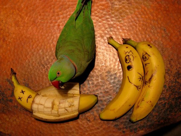 Morbid Bananas