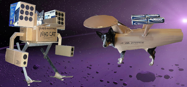 Mecha Cat Vs Enterprise Dog