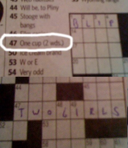 Best Crossword Puzzle Clue Ever