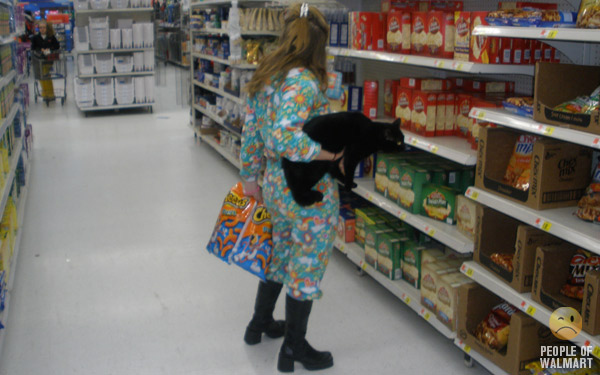 Walmart Cat
