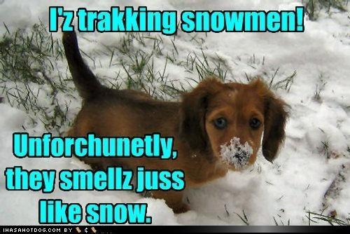 Snowman Vs Dog