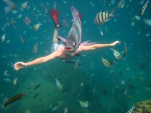 Fish Photobomb