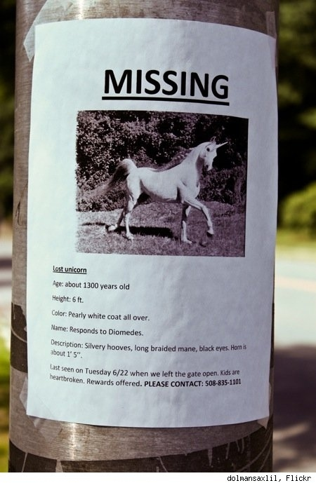 Best 'Lost Pet' Sign Ever
