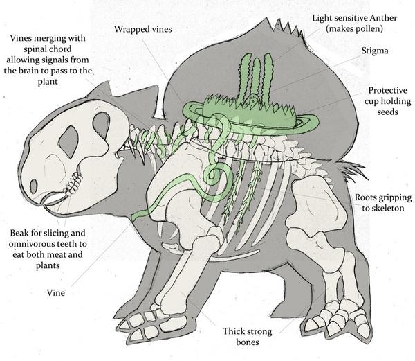 How Bulbasaur Works