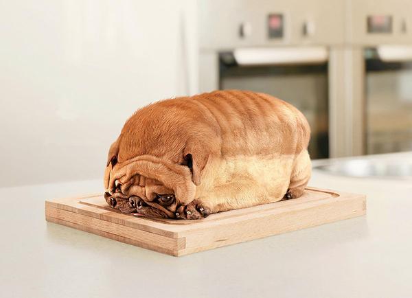 Bread, Anyone?