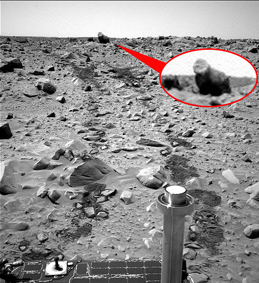 Mammal Found On Mars