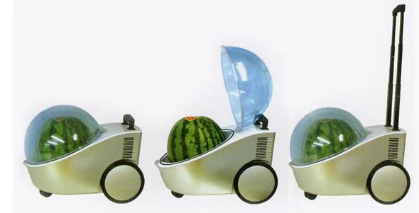 Portable Watermelon Cooler...