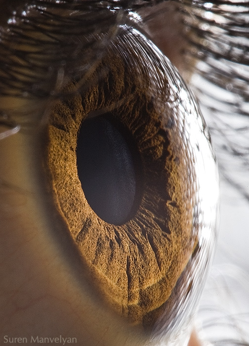 Extreme Eye Close Ups