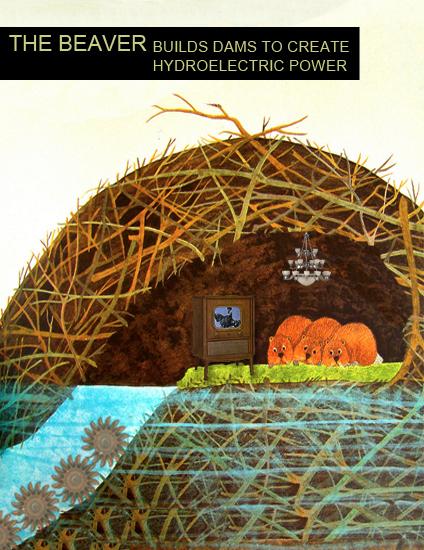 Why Do Beavers Build Dams?