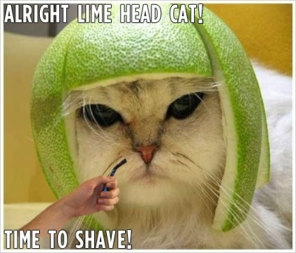 Shaving the Lime Head