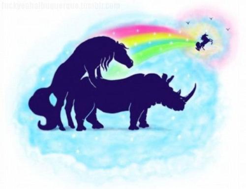 Where Unicorns Come From