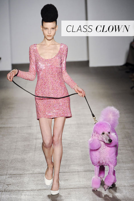 A Fashion Show for Dress, Or the Puppy?