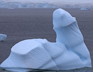 Giant Ice Penis