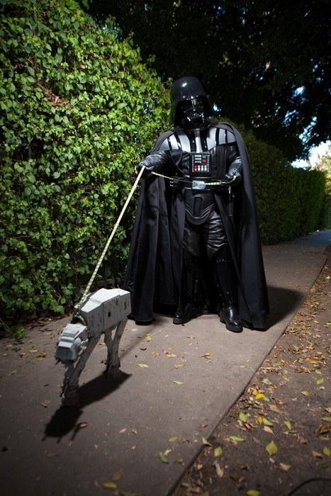 Vader Walking His Walker