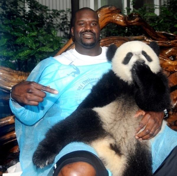 Shaq With a Panda