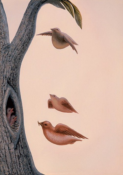 Optical Illusion- Birds Or  A Woman?