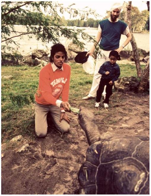 Michael Jackson Feeding a Giant Tortoise