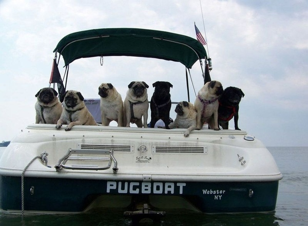 Most Accurately Named Boat Ever