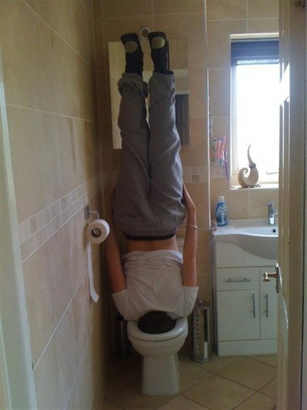 Toilet Planking