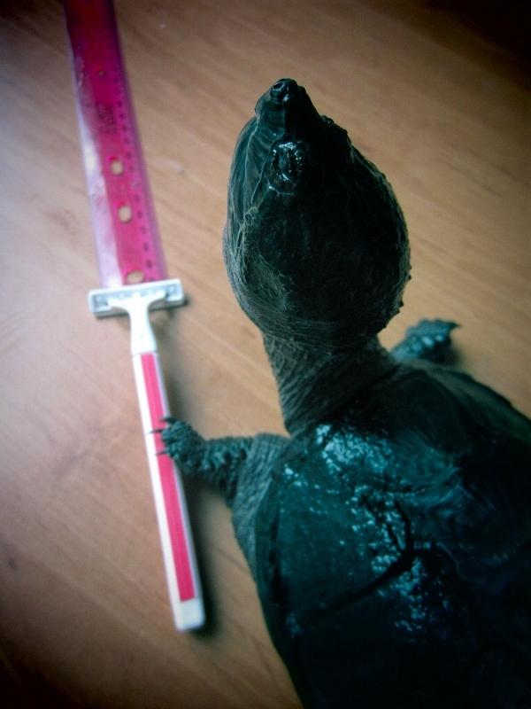 Turtle Razorbombing