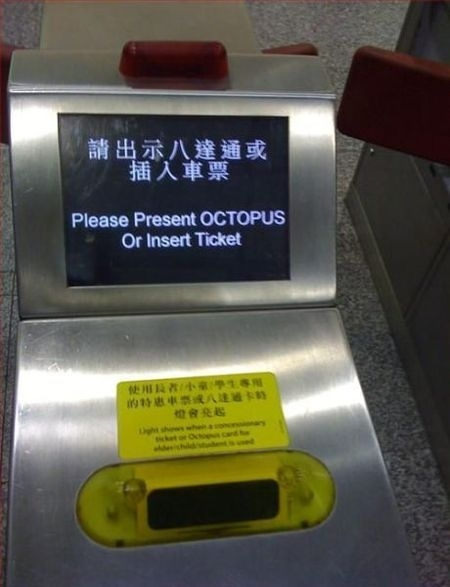 Where Did I Put My Octopus?